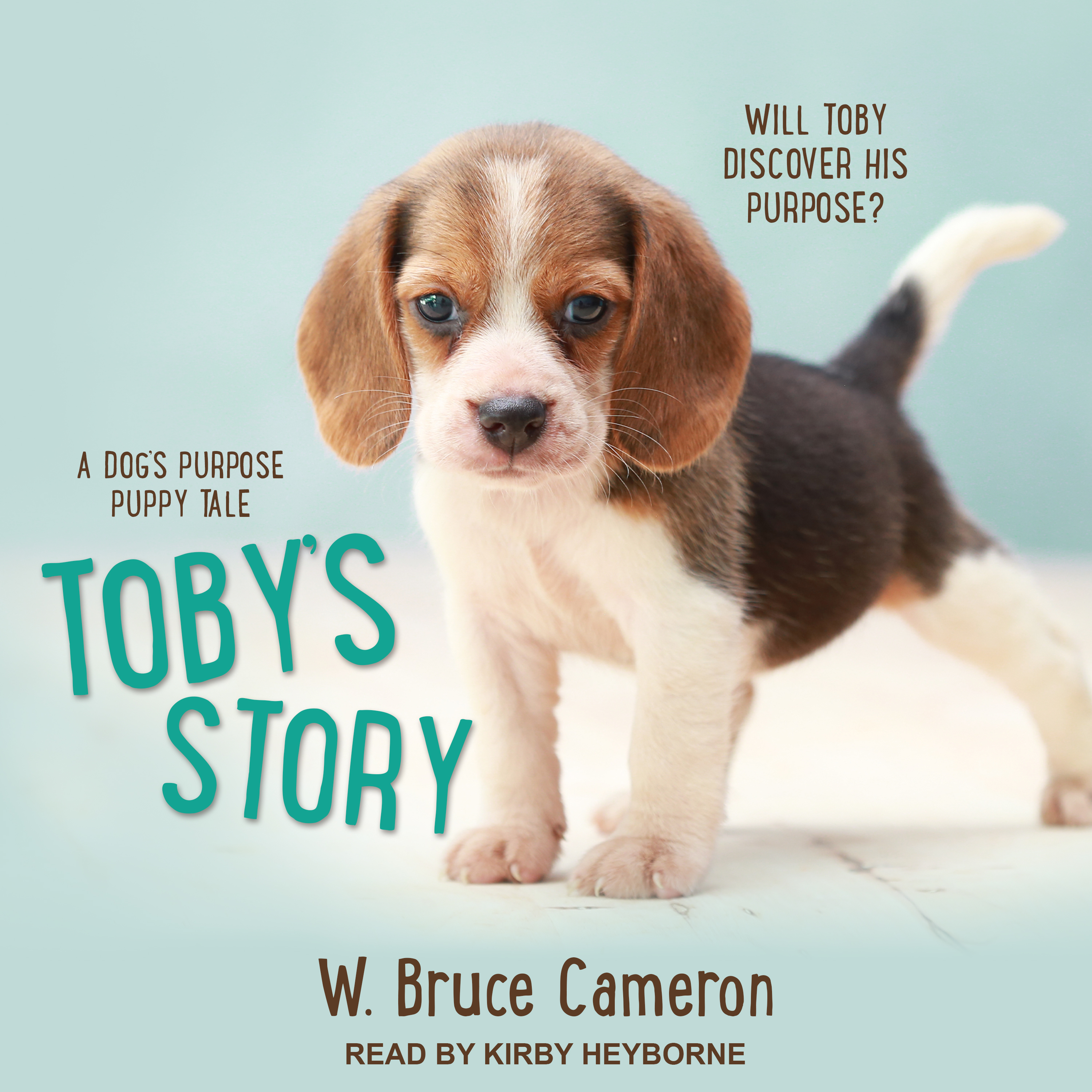 Toby's Story cover art