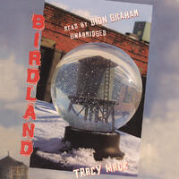 Cover art: A snowglobe containing a water tower sits on a snowy surface outside a dirty brick building