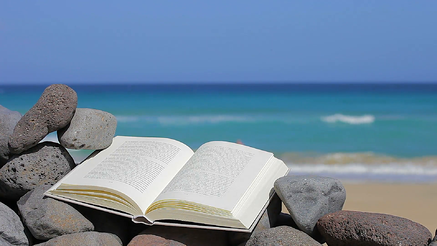 an-open-book-on-the-stones-at-the-beach-the-concept-of-the-holiday-copy-space_434kc_jil__F0000