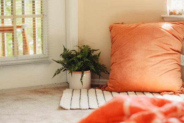 pot plant and orange pillow on the ground next to a window in a sunny corner