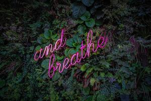 purple neon sign that says and breathe on a wall of succulents